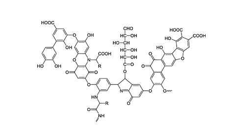 فرمول شیمیایی اسید هیومیک